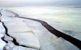 Saugus elgesys ant ledo