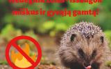 Nedegink žolės – išsaugok miškus ir gyvąją gamtą!